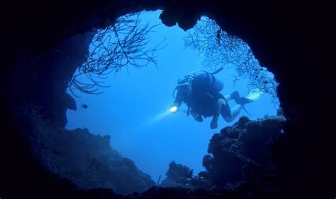 best scuba diving lights the 7 best dive lights reviewed for 2018 outside pursuits