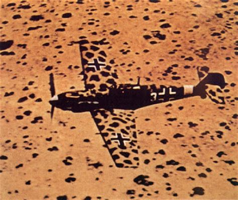 best desert camo third reich color pictures january 2010