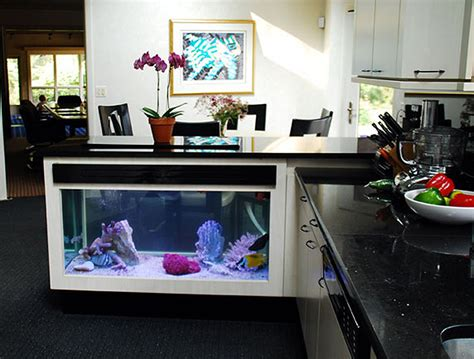 Fish Tank In Kitchen by If It S Hip It S Here Archives No Room For An Aquarium