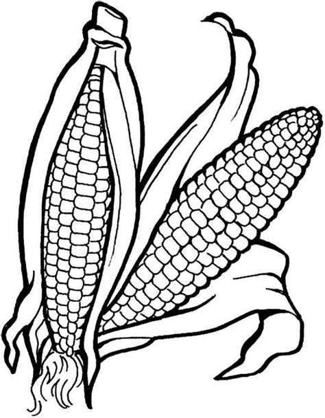 Banana Crop Putih corn clipart fruits and vegetable pencil and in color