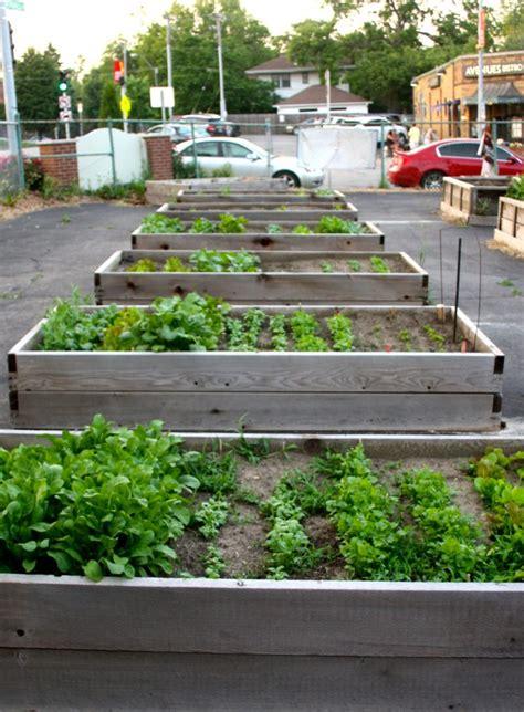 City Vegetable Garden Best 20 Vegetable Garden Design Ideas For Green Living