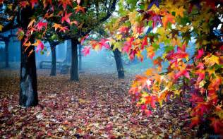 colors from nature beautiful colorful nature xcitefun net