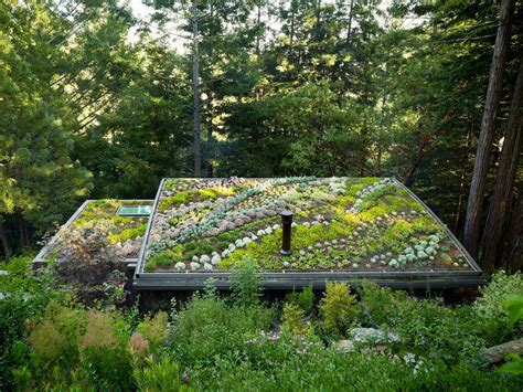 Weather Garden Valley Ca by Green Cottage In The Mill Valley Forest Woodz