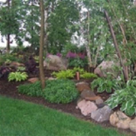 Rocks For Backyard Front Shade Garden By The Pine Trees Garden Pinterest