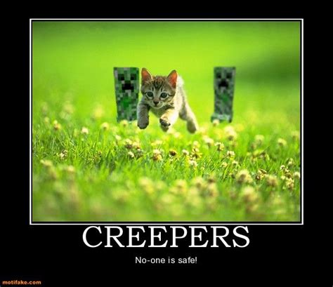 Minecraft Creeper Memes - 1000 images about funny minecraft on pinterest mine