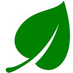 Green Leaf Outline Png by Green Leaf Icon Cliparts Co