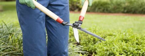 stipendio giardiniere perseguita e violenta l ex amante nei guai un giardiniere