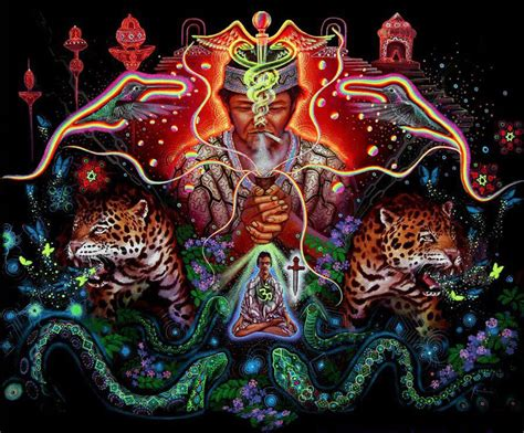 the psychedelic leap ayahuasca psilocybin and other visionary plants along the spiritual path books shamans the way to the earth godess whether