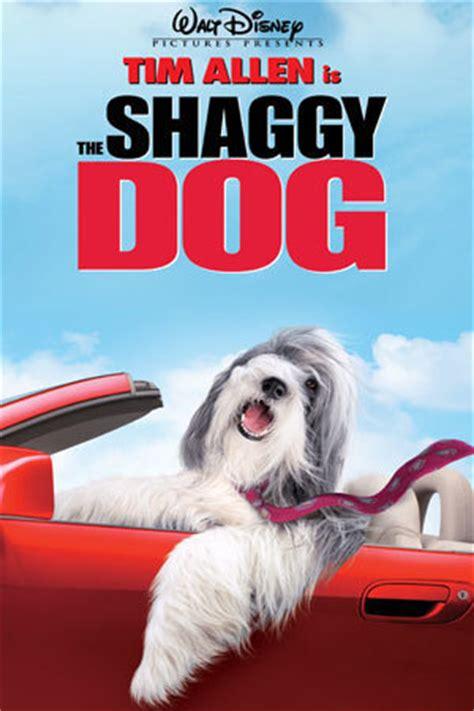 the shaggy d.a.   disney movies