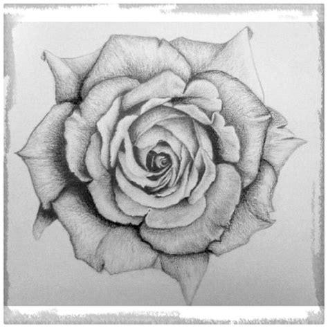 imagenes de zombies a lapiz rosas para dibujar related keywords rosas para dibujar