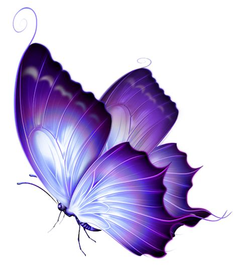 reactions to the color purple book transparent purple deco butterfly png gallery