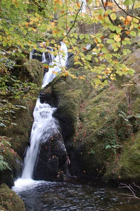 stock ghyll force ambleside visit cumbria