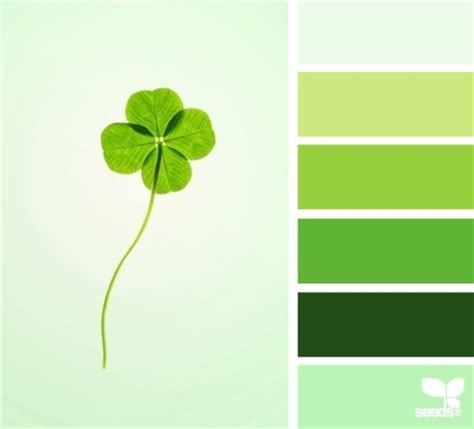 clover color 17 best images about clover on luck of the