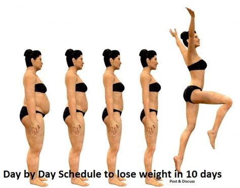 Just How Did Lose All That Weight by Day By Day Schedule To Lose Weight In 10 Days Daily