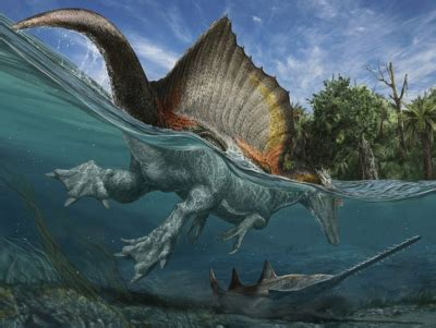 tracking down leviathan | the institute for creation research