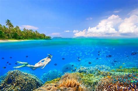 sulawesi island         trip