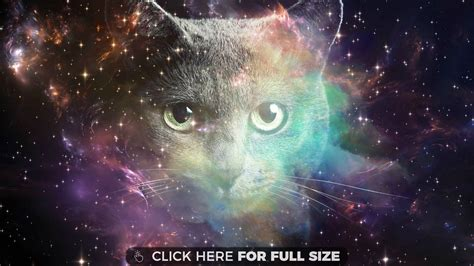 Cat In Space space cat hd wallpaper