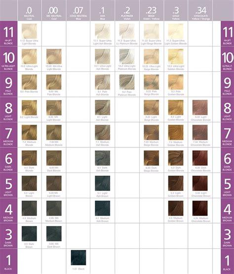 ash hair color chart best 25 ash hair dye ideas on ash