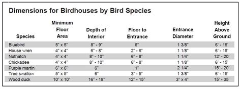 how to build bird house design hole size pdf plans
