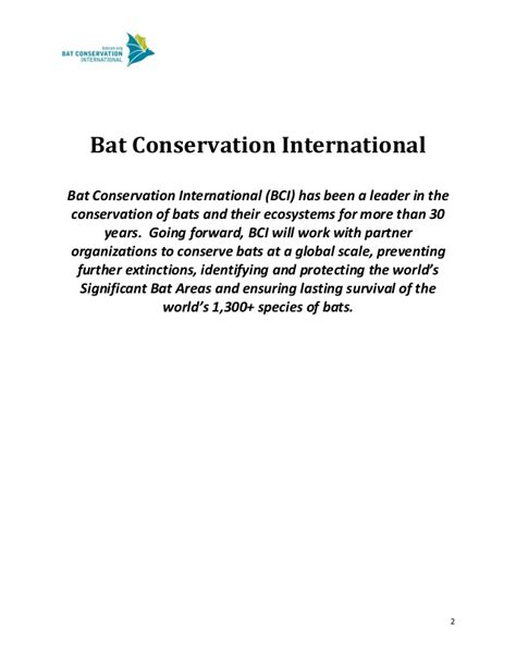 bat conservation international a five year strategy for