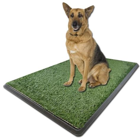 potty pad indoor doggie bathroom as seen on tv potty pad indoor dog bathroom free