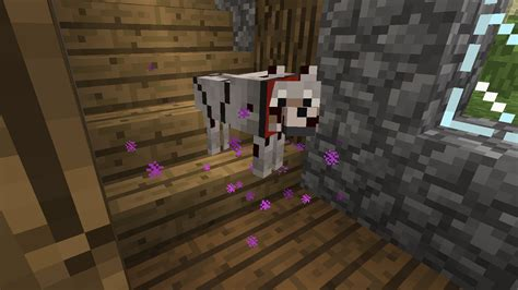 mods in minecraft dogs doggy talents minecraft mods