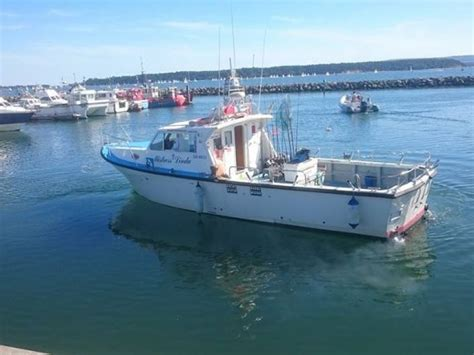 charter fishing boat prices charter boat fishing prices poole mistress linda charters