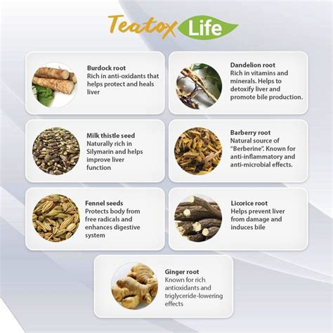 Licorice Root Detox by Image Result For Licorice Root For Liver Cancer Cures