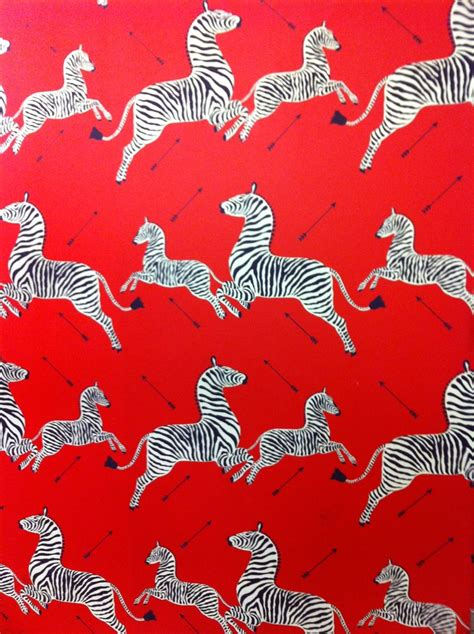 zebra wallpaper pinterest scalamandre zebra and arrows wallpaper wallpaper