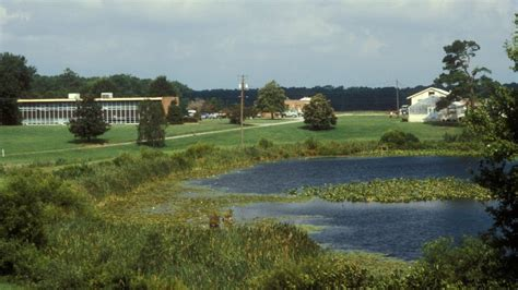 eastern shore agricultural research and extension center
