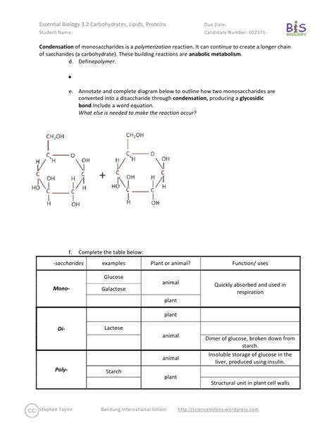 Chemistry Of Fats And Proteins Worksheet Answers by Carbohydrates Fats And Proteins Worksheet Pictures