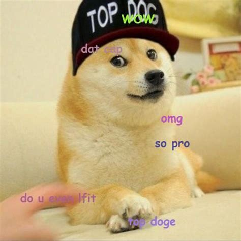 Know Your Meme Doge - top doge doge know your meme