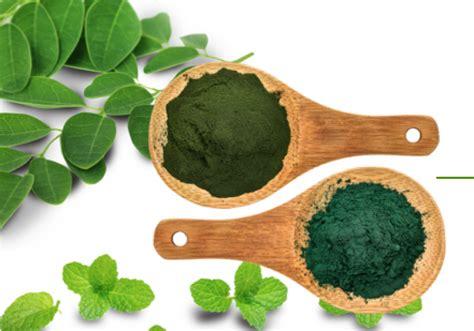 Suplemen Juice best green juice powder supplement where can i buy organifi