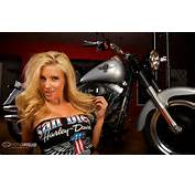 Hot Harley Motorcycles Images &amp Pictures  Becuo