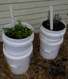 container gardening self watering self watering 5 gallon containers images frompo 1