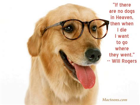 sayings about dogs dogs quotes the of a canine inspirational quotes about dogs mactoons