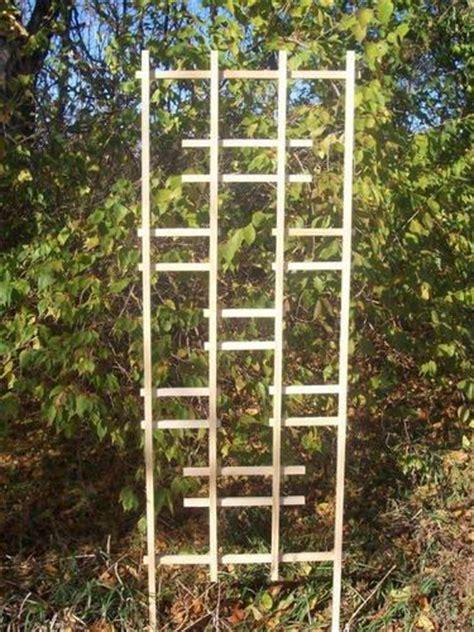 Menards Trellis 24 quot x 72 quot white ladder trellis at menards 174