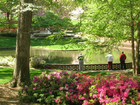Glencairn Gardens Rock Hill Sc 1000 Images About Rock Hill Sc On Pinterest