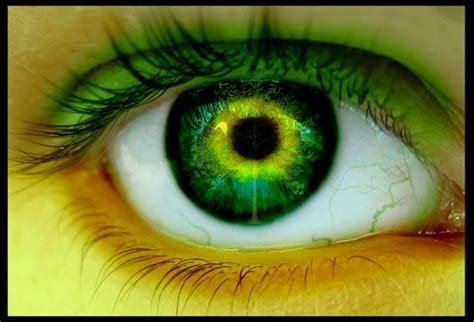 imagenes ojos verdes llorando ojos lindos llorando imagui