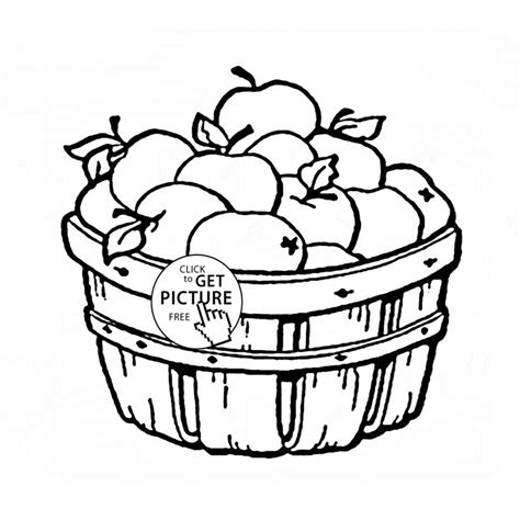 apple barrel coloring pages 65 best fruits coloring pages images on pinterest