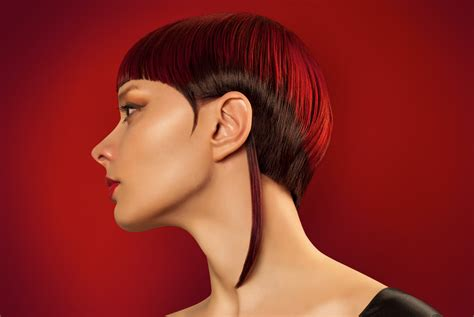 Vidal Sassoon Hairstyles by Vidal Sassoon Hairstyles Ideas Hairstyles For
