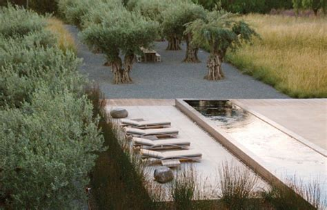 Edge Landscape Architecture Design 101 Guest Beth Haggerty On How To