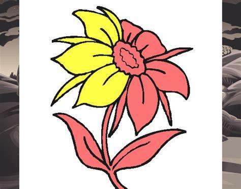 fiore selvatico disegno fiore selvatico colorato da utente non registrato