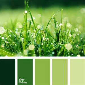 green combinations green pine color palette ideas