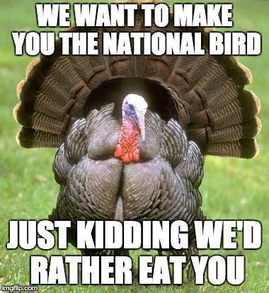 Turkey Meme - 4 ways to get through thanksgiving in college ucribs