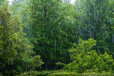 photo of photo du jour pluie battante photo paysage le