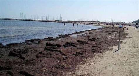 farmacie porto san giorgio porto san giorgio la spiaggia della bandiera invasa