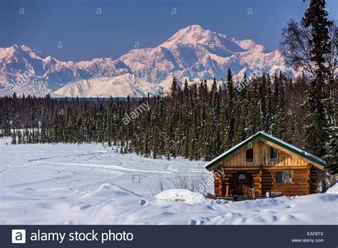 log cabin  mt mckinley  alaska range   background stock photo  alamy