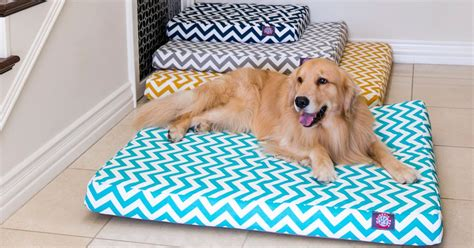 how to clean a dog bed how to clean a dog bed 28 images how to clean a dog