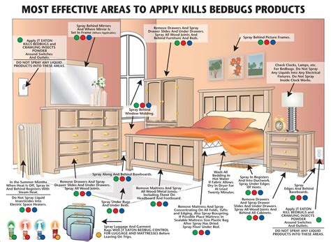 how long does it take to kill bed bugs what to do after your first bed bug treatment before and